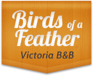 Birds of a Feather B&B