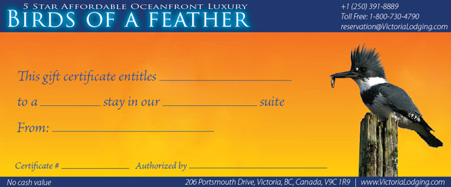 OnLine Gift Certificate Birds of a Feather Victoria bed and breakfast
