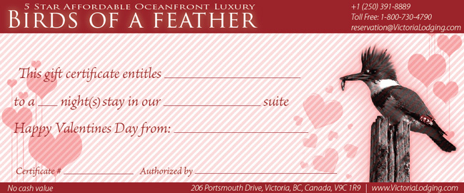 OnLine Gift Certificate Birds of a Feather Victoria BC bed and breakfast