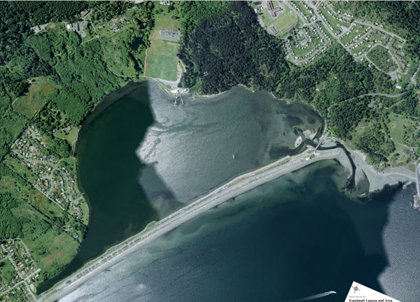 aerial view of the Esquimalt Lagoon - dock bottom right is Birds of a Feather B&B