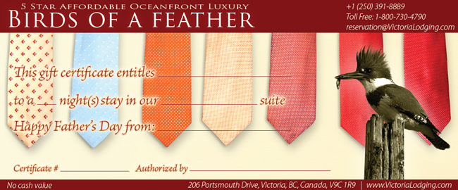 Birds of a Feather Fathers Day Gift Certificates